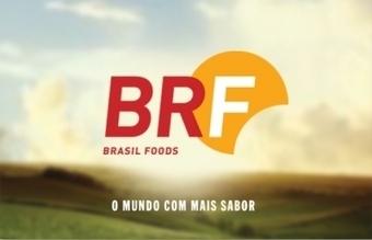Brasil Foods y el banco de Yunus desarrollarán la industria avícola ... - Info7   Estrategias Genéticas para la Producción de Aves   Scoop.it
