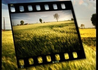 Sites pour trouver des photos libres de droits   Autour du Web   EDTECH - DIGITAL WORLDS - MEDIA LITERACY   Scoop.it