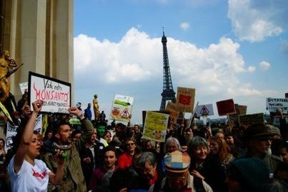 Le jour où le monde a marché contre Monsanto - Le Club de Mediapart | pesticides : un vrai cancer social ? | Scoop.it