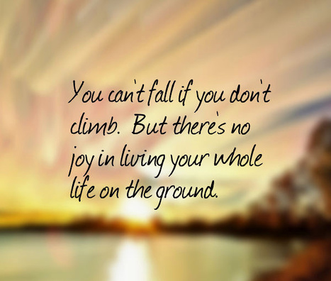 You can't fall if you don't climb.  But there's no joy in living your whole life on the ground. | Picture Quotes and Proverbs | Scoop.it
