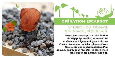 OPÉRATION ESCARGOT NOVA-FLORE, Une vision du jardinage 100% engagée, 100% décalée | Actualités Nova-Flore | Scoop.it