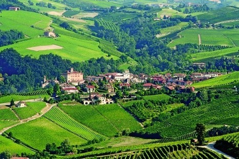 History of Wine in 100 Bottles: Barolo  - Decanter | From the Bar | Scoop.it