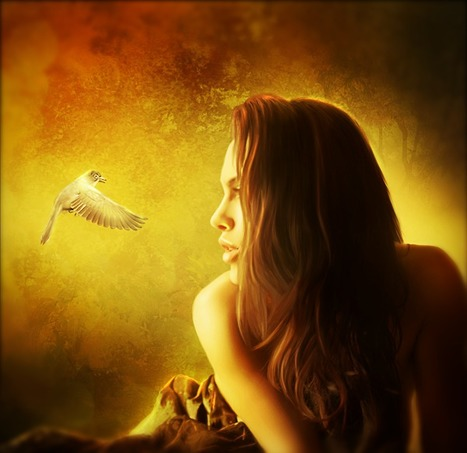 Create a Warm Dreamy Lighting Scene in Photoshop | Photoshop Photo Effects Journal | Scoop.it