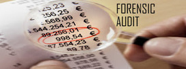Forensic Auditing in Government - YourKnowledgeportal | public expense validity | Scoop.it
