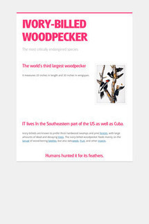 Design flyers to spread the word online | Smore | English teaching scoop | Scoop.it