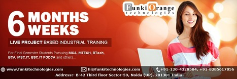 Job Oriented Training Program with 100% Placement and Experience Certification - Delhi NCR | Web Designing and Development Services | Scoop.it