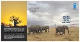 Combating Poaching and Wildlife Trafficking | UNDP | GarryRogers Biosphere News | Scoop.it