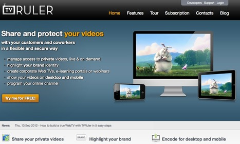 TVRuler | Duct Tape Media | Scoop.it
