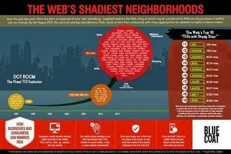 Blue Coat desvela en un informe los dominios más turbios e infecciosos de la Web - Análisis - Amenazas Web - IT SEGURIDAD.es | Ciberseguridad + Inteligencia | Scoop.it
