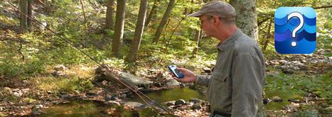Wetlands, Oceans, and Watersheds | Office of Wetlands, Oceans & Watersheds | US EPA | Infraestructuras verdes | Scoop.it