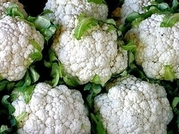 Why GMO Food Opponents Shouldn't Freak Out About Cauliflower Virus DNA - Forbes   A Better Food System   Scoop.it