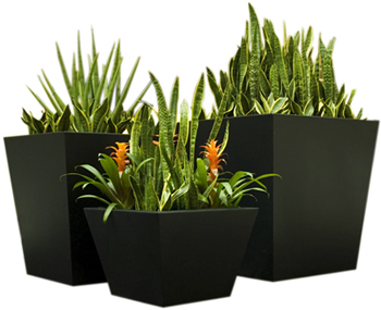 Aluminium planters,vertical garden,metal,partition,india,pots,stainless steel | 123Coimbatore | Scoop.it