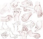 human study - hand by ~demann66 on deviantART | animation education | Scoop.it