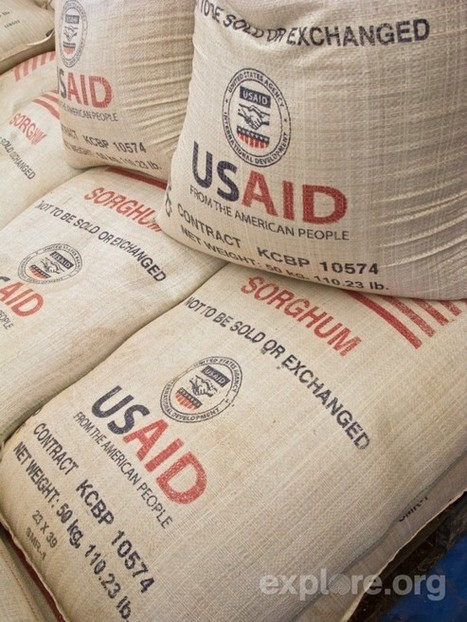 Food Aid: Why Local and Regional Procurement Is Better | Wheat World | Scoop.it