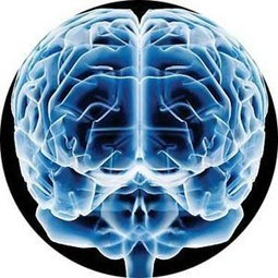 ¿Cuántos gigabytes caben en el cerebro humano?   eRanteTecnologia   Scoop.it