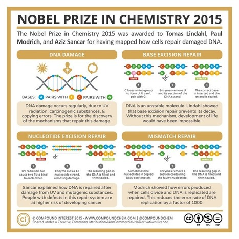 The Nobel Prizes in Science 2015 | Chemed | Chemistry Education | Scoop.it