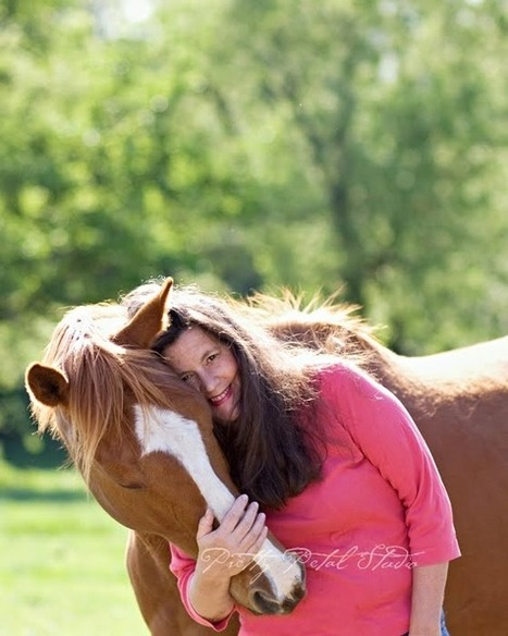 Holistic Equine-Natural Health for Your Horse: Equine colic chart- | Equine Colic Chart | Scoop.it