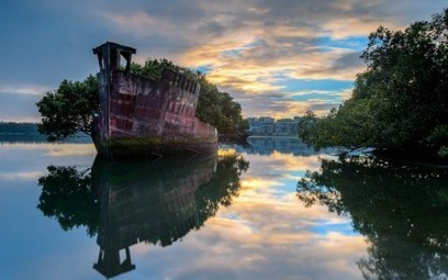 102-year old ship is a floating forest off the coast of Sydney - Lost At E Minor: For creative people | Engaged Learning | Scoop.it