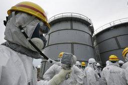 Les Yakuzas infiltrés à Fukushima | Japon : séisme, tsunami & conséquences | Scoop.it