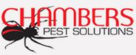 Pest Control Tips | Pest Treatment & Control | Pest Control Perth | Pesti Pest Control | Scoop.it