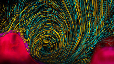 The Best Science Visualizations of the Year | Science, Technology, and Current Futurism | Scoop.it