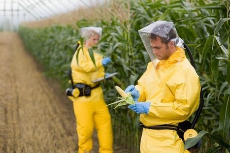"""April 6th 2013 : Mark your Calendars """"Monsato Bill Signed Into Law ...   Monsato, GMOs and other horrors   Scoop.it"""