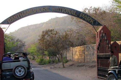 Ranthambore National Park- The Land that Roars | Explore The Destinations in India & Across India | Scoop.it