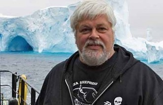 #Sea_Shepherd | Now is the Time to Help our Oceans & it's Species ! | Scoop.it
