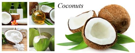 Viet Delta Corporation | fresh pineapple | Scoop.it