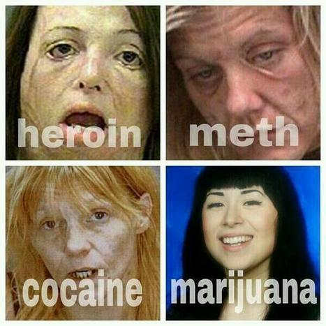 Twitter / SheeeRatchet: The truth about weed ... | Cannabis | Scoop.it