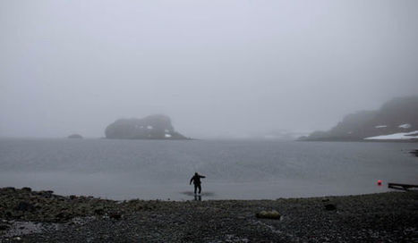 Our Chemicals Are Falling On Remote Parts of Antarctica In Snow - Gizmodo | Antarctica | Scoop.it