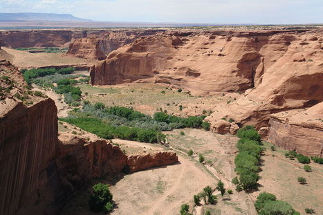 Navajo Nation wins ruling for remains removed from reservation | Indigenous Sovereignty | Scoop.it