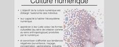 Seize leçons de culture numérique par Hervé Le Crosnier | Gestion des connaissances et TIC pour le développement | Scoop.it