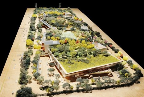 Exclusive Photos Of Facebook's Sprawling New HQ, Designed Frank Gehry | Startup & Silicon Valley News, Culture | Scoop.it