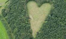 Aerial photograph reveals widower's secret heart-shaped tribute | The Global Village | Scoop.it
