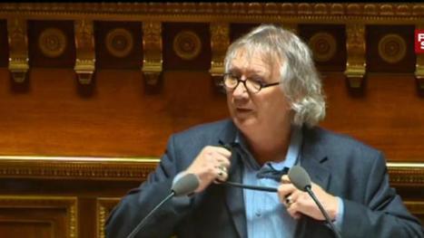 Insolite au Sénat. Joël Labbé tombe la cravate pour montrer sa colère | Abeilles, intoxications et informations | Scoop.it