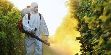 [Pétition] Monsanto ou notre santé? | Toxique, soyons vigilant ! | Scoop.it