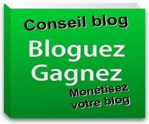 La blogosphère en déclin : selon le Monde en déclin | Personal Branding and Professional networks - @TOOLS_BOX_INC @TOOLS_BOX_EUR @TOOLS_BOX_DEV @TOOLS_BOX_FR @TOOLS_BOX_FR @P_TREBAUL @Best_OfTweets | Scoop.it