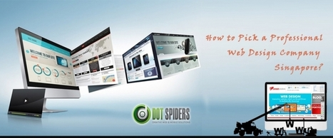 How to Pick a Professional Web Design Company Singapore? | What is Search Engine Optimization? | Scoop.it