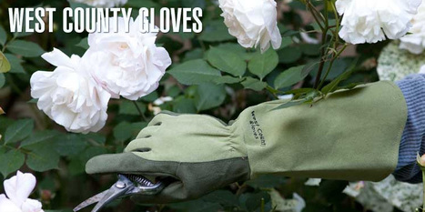 West County Gardener - Garden gloves for every season | Anchors Sales Company - Portfolio | Scoop.it