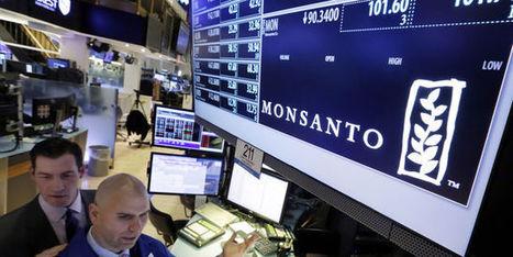 Bayer-Monsanto : manger ou être mangé | Chimie verte et agroécologie | Scoop.it