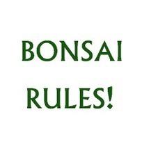 design at Susan's Zoo Crew | Bonsai and garden | Scoop.it