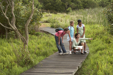 Six Outdoor Education Resources for Parents | Edutopia | Texas Children in Nature | Scoop.it