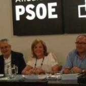 La militancia andaluza elegirá al candidat@ a la Junta en primarias el 29 de julio | Estado de la Nación | La Andalucía Libre | Scoop.it