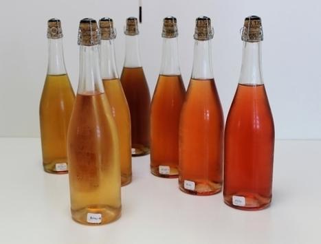 Le cidre aussi peut etre rosé | Le Vin et + encore | Scoop.it