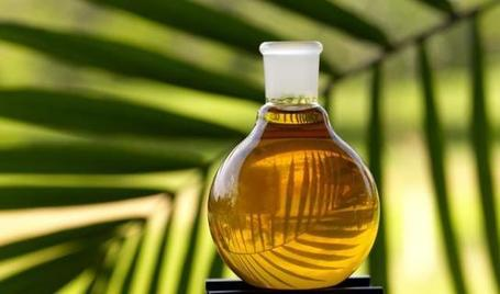 New Research: Palm Oil for Biofuels Accelerating Climate Change? | Local Economy in Action | Scoop.it