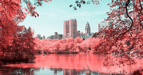 Infrared Photos Transform NYC Into a Technicolor Dreamland | CLOVER ENTERPRISES ''THE ENTERTAINMENT OF CHOICE'' | Scoop.it