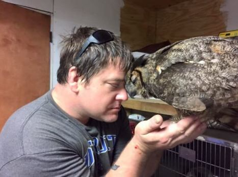 Owl Can't Stop Hugging The Man Who Rescued Her After Bad Accident - Good News Network | This Gives Me Hope | Scoop.it