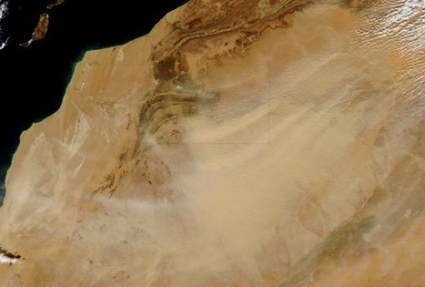 Sahara Desert Was Greener In Ancient Times - Science News - redOrbit | Ancient Origins of Science | Scoop.it