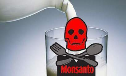 2 FOX News Reporters Fired for Covering Monsanto's Cancer-Causing GMO Milk   Plant Based Transitions   Scoop.it